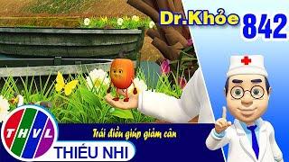 Dr. Khỏe - Tập 842: Trái điều giúp giảm cân