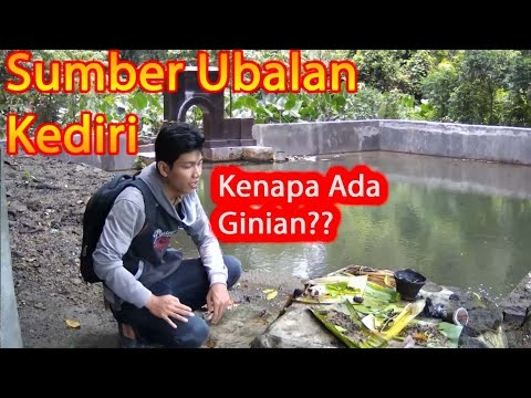 Pengiriman Ayam Abdul Muis Tujuan BANDUNG.HP/WA 081391346956-Abdul Muis from YouTube · Duration:  3 minutes 21 seconds