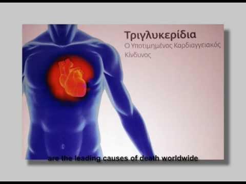 LIPOTEST - Postprandial Lipemia and Cardiovascular Risk