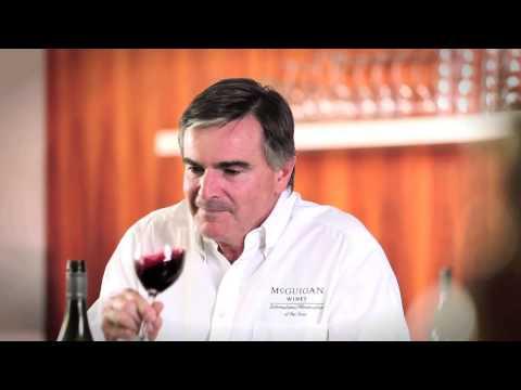 Tasting Note - McGuigan Wines The Shortlist Shiraz