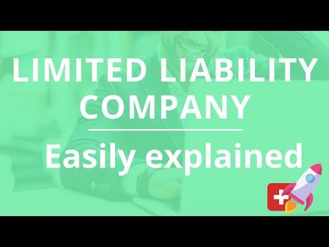 Limited Liability Company (Ltd Liab. Co.) – easily explained