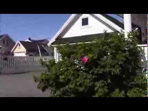Beautiful Houses in Norway