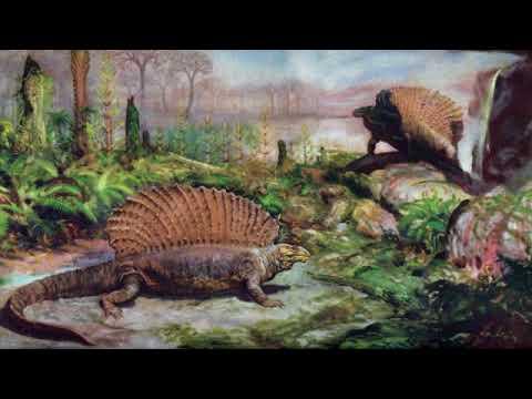 Вопрос: У какой из птиц зубастая пасть как у крокодила?
