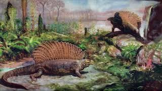Звероящеры (рассказывает палеонтолог Ярослав Попов)