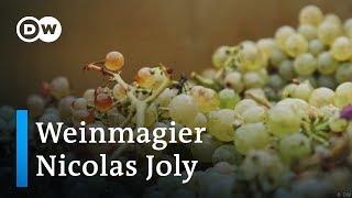 Weinanbau nach dem Mondkalender | Euromaxx