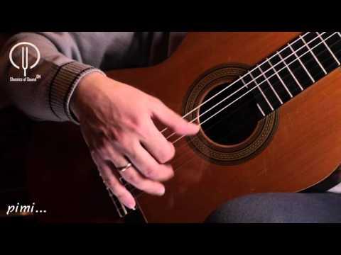 Classical guitar playing technique. Tremolo. Dmitry Nilov.