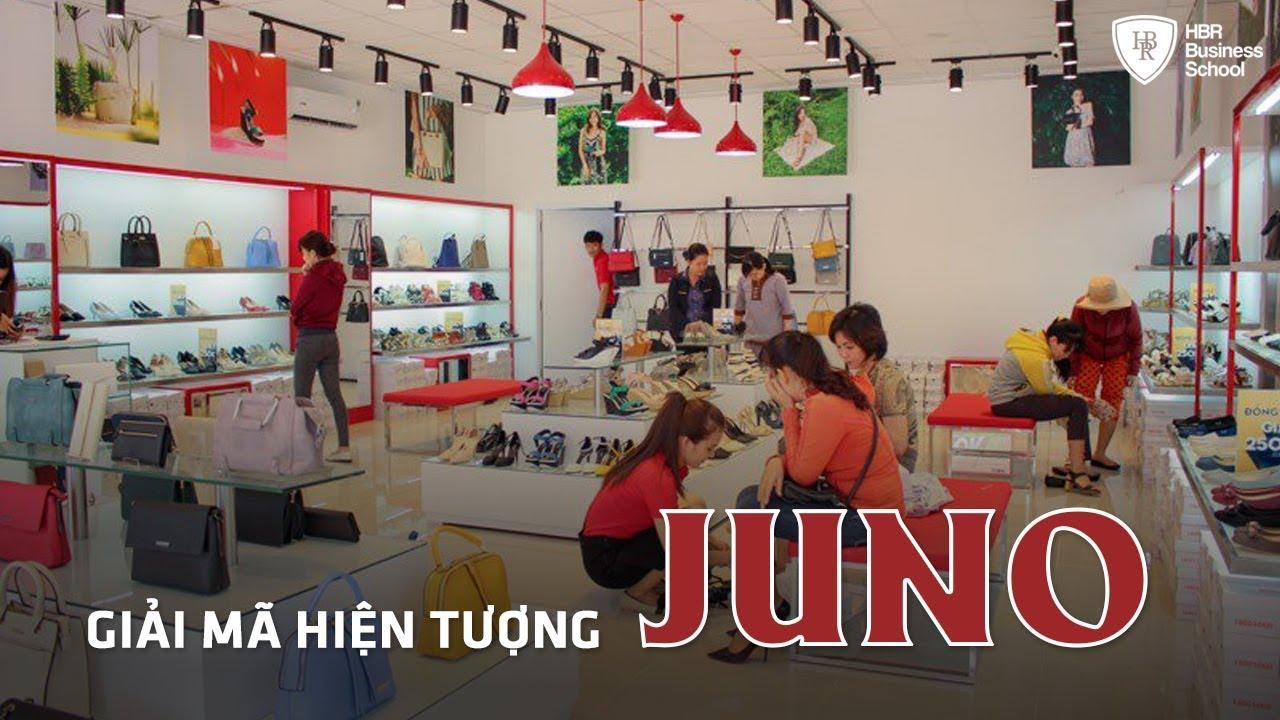 Bài học kinh doanh đáng học hỏi – Giải mã hiện tượng Juno