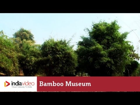 Bamboo museum of Kerala Forest Research Institute, Thrissur