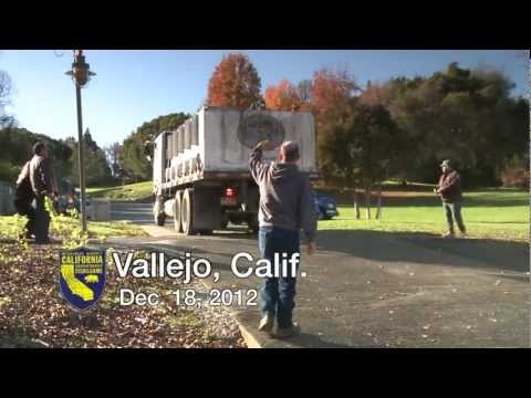 DFG Plants Trout In Lake Chabot