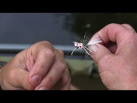 Fly Fishing for Bluegill