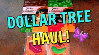 DOLLAR TREE HAUL And WALK THROUGH! Yes To Face Masks! August 9, 2019 | LeighsHome