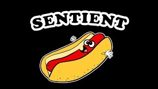 SENTIENT HOT DOG T-Shirt Launch Promo