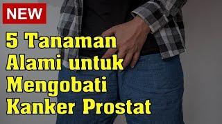 Mengobati Kanker Prostat Bersama Dr Edi #7.