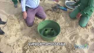 Instrucción de la Tecnología anti desertificación Groasis...