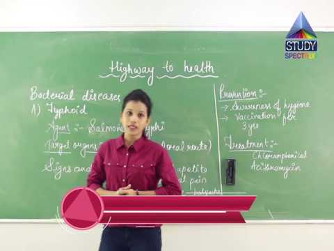 MSB 9 Science   Highway To Health Ep 2