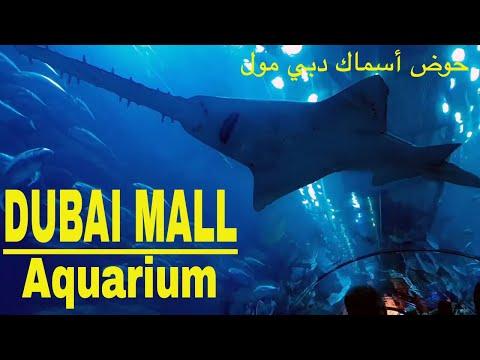 ОАЭ – Аквариум в Дубай молл – The Dubai Mall Aquarium and underwater zoo