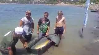 Sazan avi bursa 19.500 kg