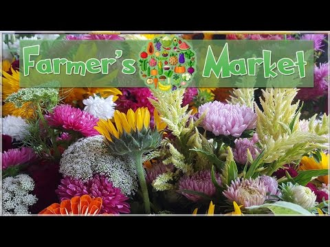 Searching for Flowers at the Market! • Farmer's Market Vlog!