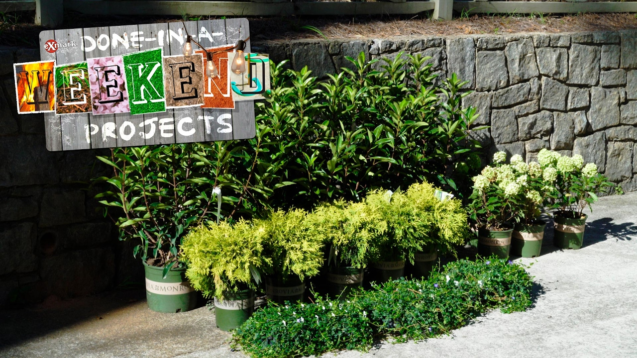 Layer Up Choosing Landscaping Plants That Speak To You And Your