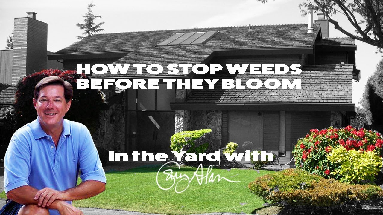 How to stop Weeds before they bloom - In the Yard with Gary Alan