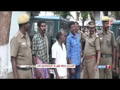 Police prevent smuggling of tiger claws in Sathyamangalam Tiger Reserve