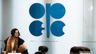 Citi's Ed Morse Says OPEC Is Losing Its Clout