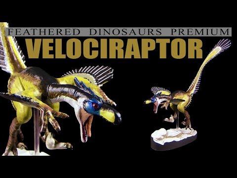 Colorata ® Velociraptor - Feathered Dinosaurs Premium - Unboxing Teil 3