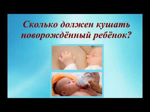 Как должен есть новорожденный ребенок