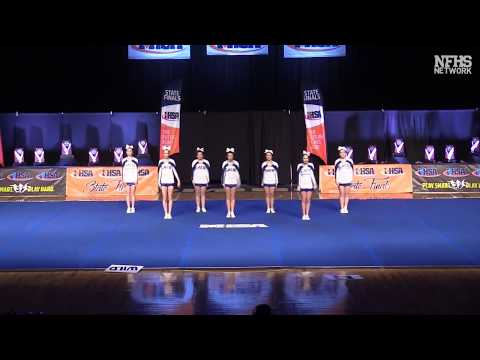 2018 IHSA Competitive Cheerleading FInals, Small and Medium Divisions