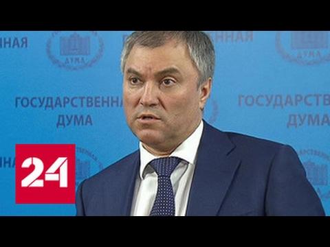 Володин считает ошибкой уголовное наказание за избиение близких