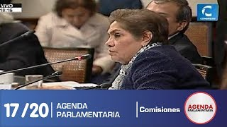 Sesión Comisión de Constitución 17/20 (17/07/19)