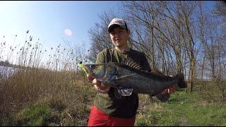 Рыбалка в Краснодаре. Ловим ЧЕРНЫХ СУДАКОВ!