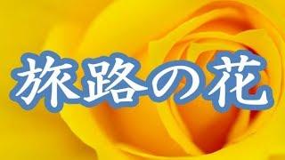 服部浩子 - 旅路の花