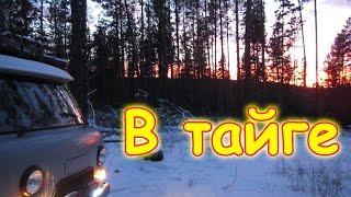 Семья Бровченко. Поездка в зимний лес - поиск дров.... (12.16г.)
