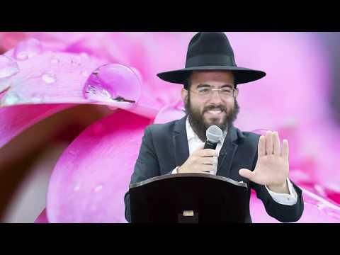 הרב סנדרו בוחניק - לקראת מתן תורה HD - שידור חי