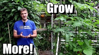 5 Tips for Beginners to Grow More Food in a Small Garden