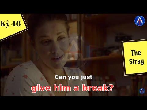 [HỌC IDIOM QUA PHIM] - Give Him A Break (Phim The Stray)