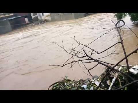 बिहार नदी