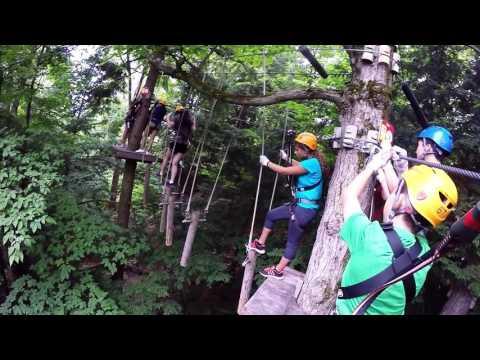 Treetop Eco-Adventure Park - Oshawa