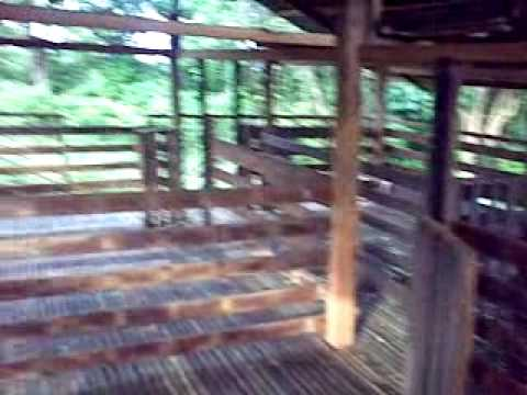 low cost goat house video for comments from goatraisers