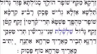 טעמי המקרא ספרדי ירושלמי Jerusalem Sephardic Cantillation