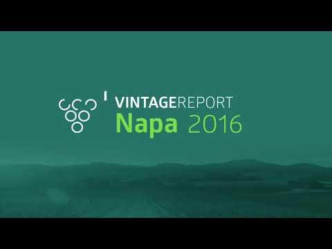 2016 Napa Vintage Report Livestream