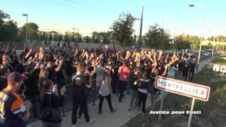 Marche pour Casti (Montpellier 2014)