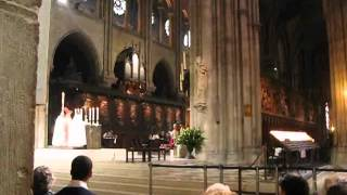 Paris Travel - Notre Dame, Les Halles, Tour St-Jacques, Hôtel de Ville, Le Marais