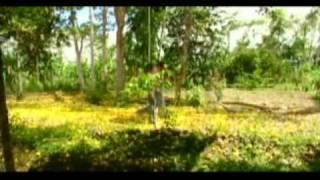 EL PANGUI - ZAMORA CHINCHIPE