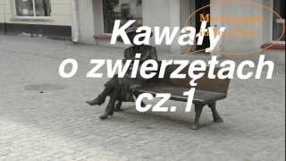 Kawały  o zwierzętach cz. 1