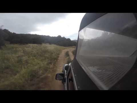 Canon City Colorado Jeep Tours Tarantula