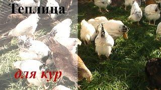 Содержание Кур в Теплице ... мой метод