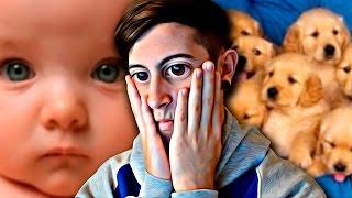PREGUNTAS IMPOSIBLES: ¿Matar un bebé o 100 cachorros? thumbnail