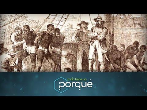 brasil-y-su-historia---todo-tiene-un-porqué